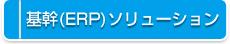 基幹(ERP)ソリューション
